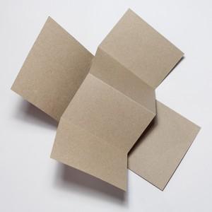 Blank (sản phẩm trơn)